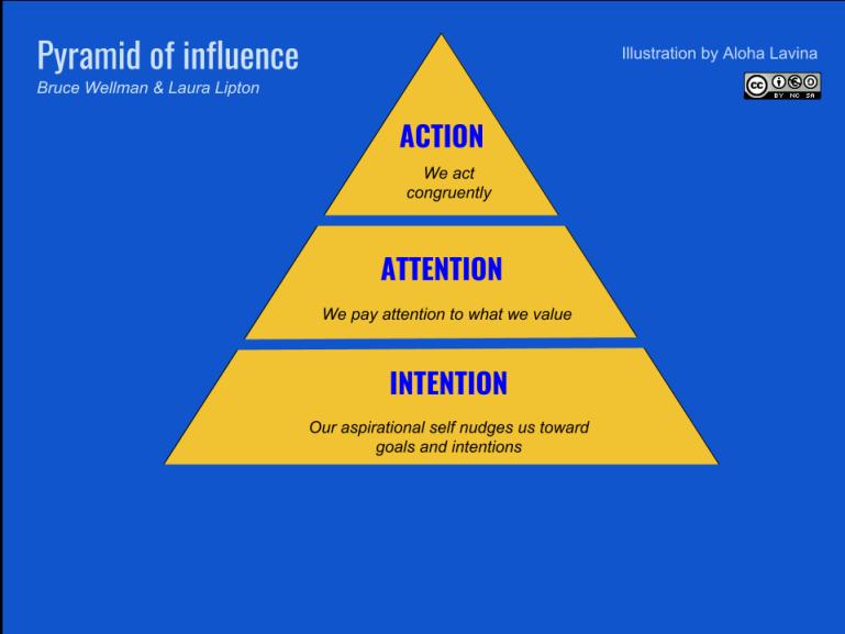 Original Pyramid of influence